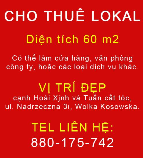 QC Lokal